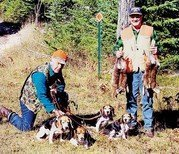 Field trialing with beagles | Woods N Water News
