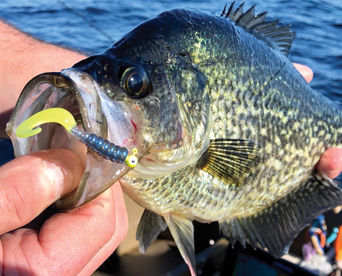 PULLING JIGS FOR MORE FISH!